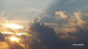 Pensieri e nuvole